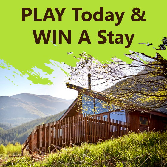 Support Your School & WIN A Forest Holiday